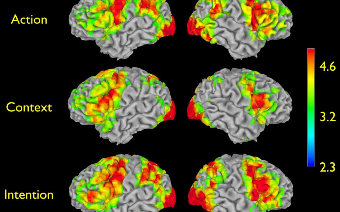 GIACOMO RIZZOLATTI: I NEURONI SPECCHIO E L'EMPATIA