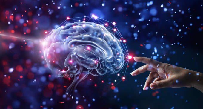 IL DONO DELLA NEUROPLASTICITA': COME SI MODIFICA IL CERVELLO